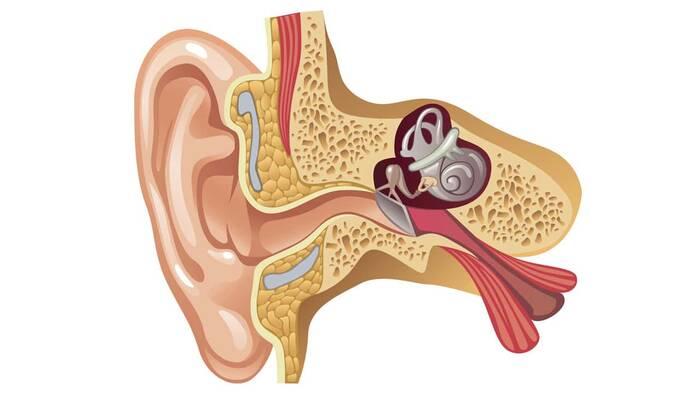 Maniobras de reposicionamiento canalicular, solución al vértigo
