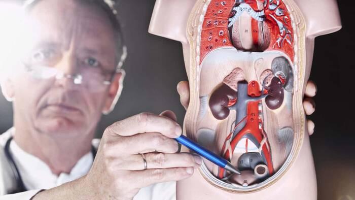 procedimiento de rezum para el cáncer de próstata