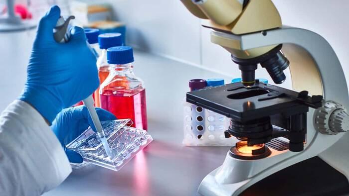 Tratamiento con células madre para la artrosis de rodilla